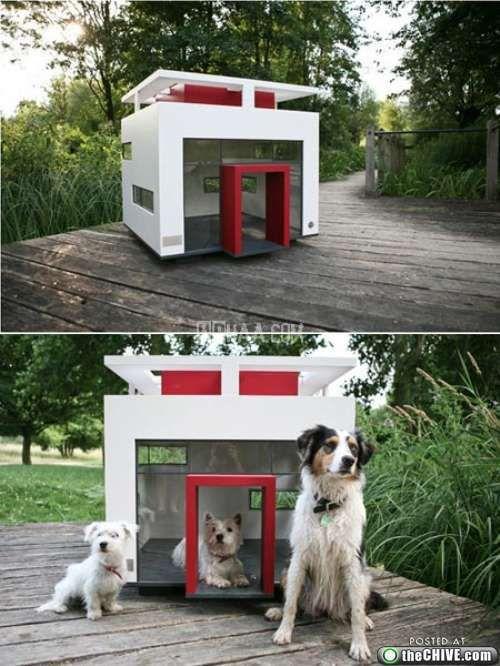 awesome-dog-houses-2