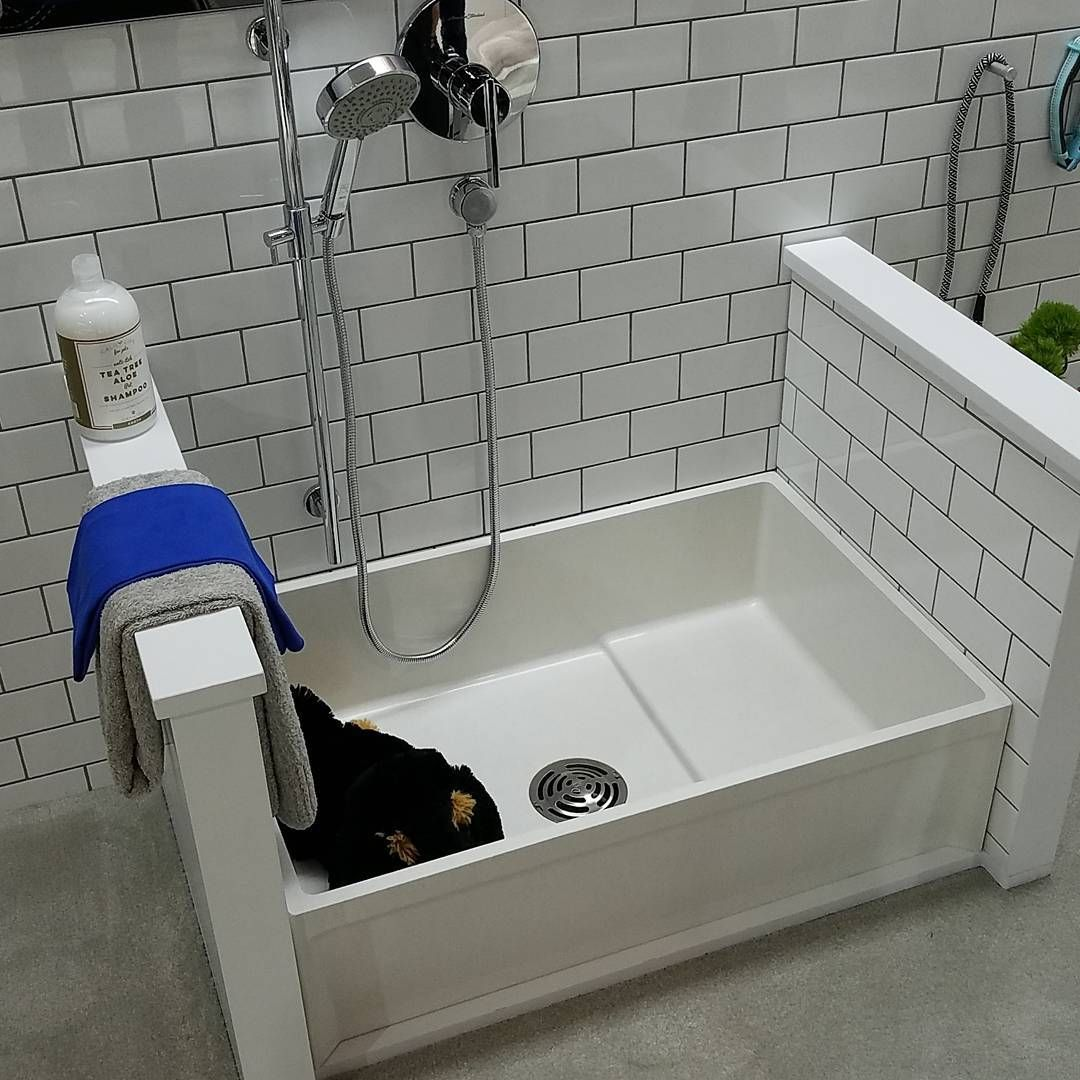 Fiat Mop Basin Used As A Pet Bath This Model Is About 200