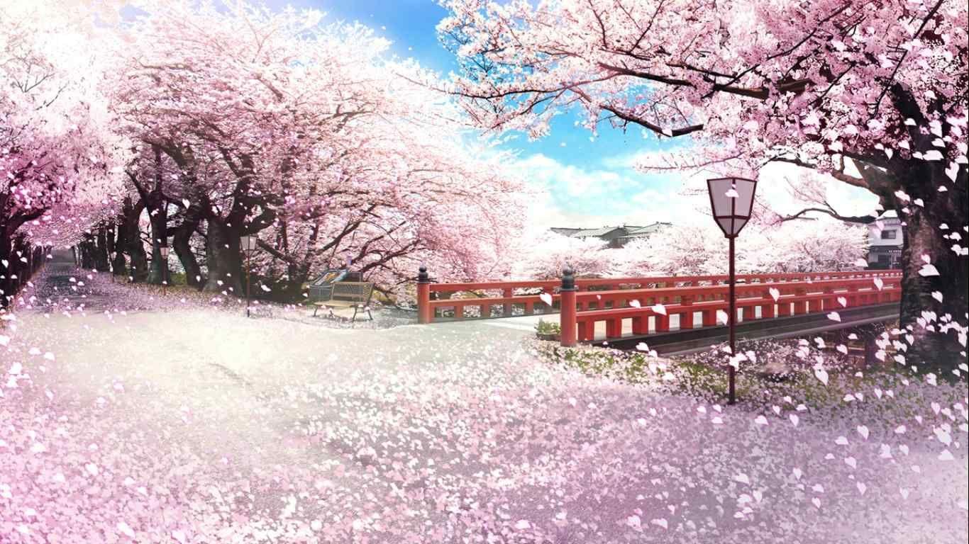桜並木 さくら 咲きました ファンタジーな風景 美的アニメ 幻想的なイラスト