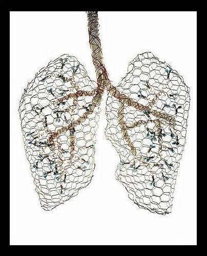 1000  images about breathe on Pinterest | Just breathe, Hand ...