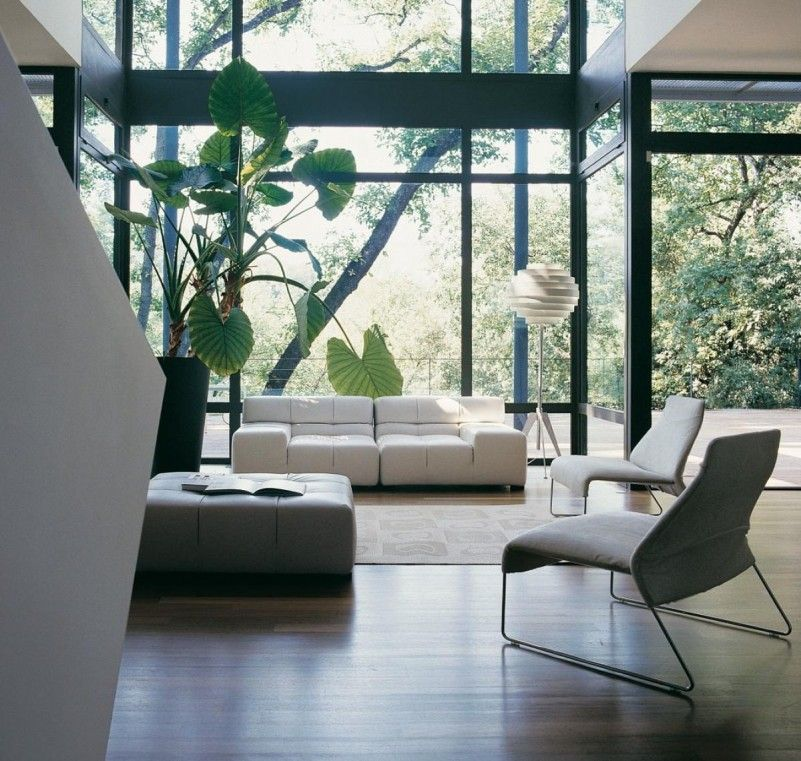 White Living Room Furniture High Ceiling Ideas Glass Wall Forest House  Surrounded By Green Plants Nad