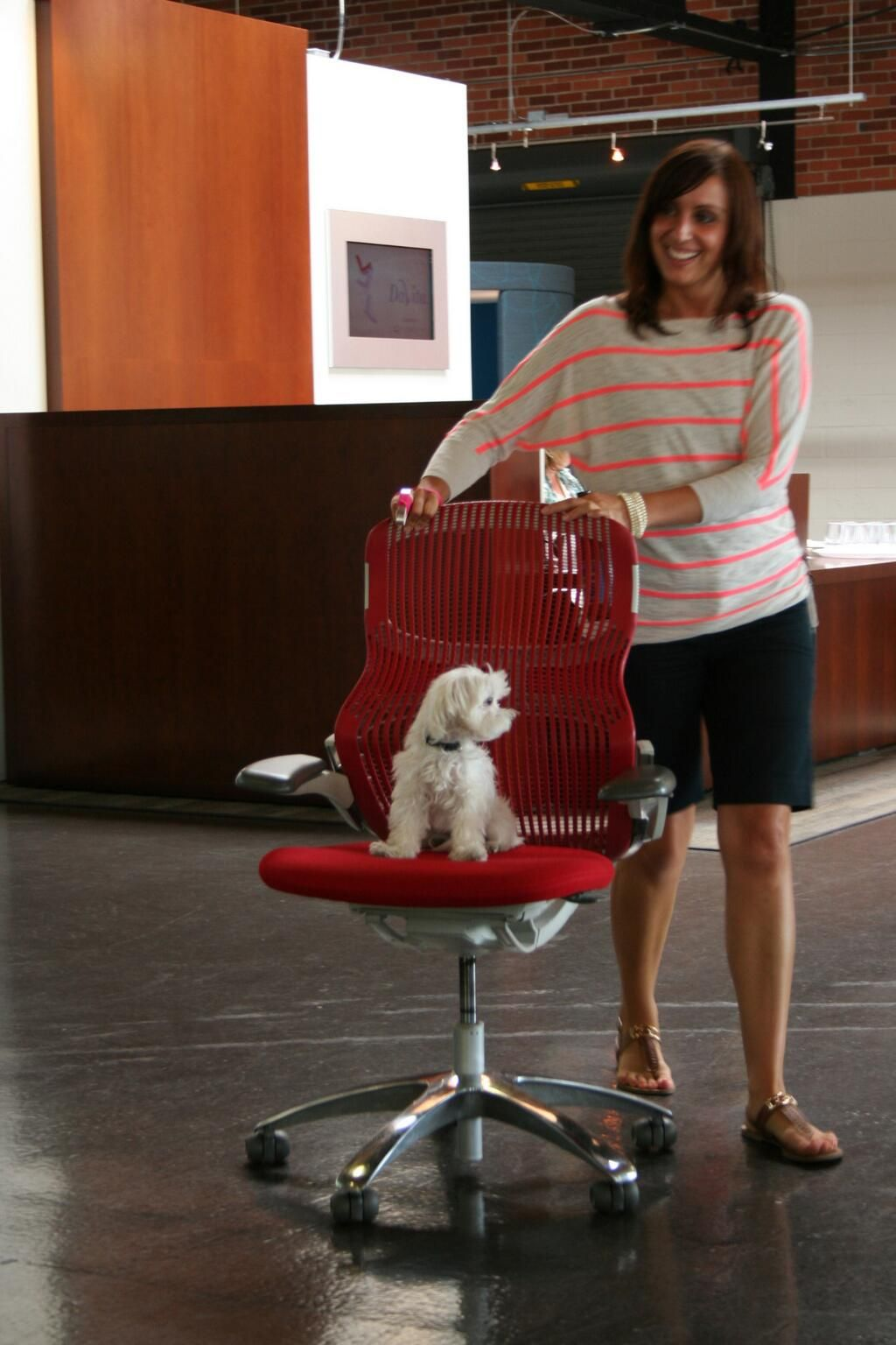 This adorable pup looks comfortable in the Generation by Knoll!  This image comes to us from our friends at Workplace Elements.