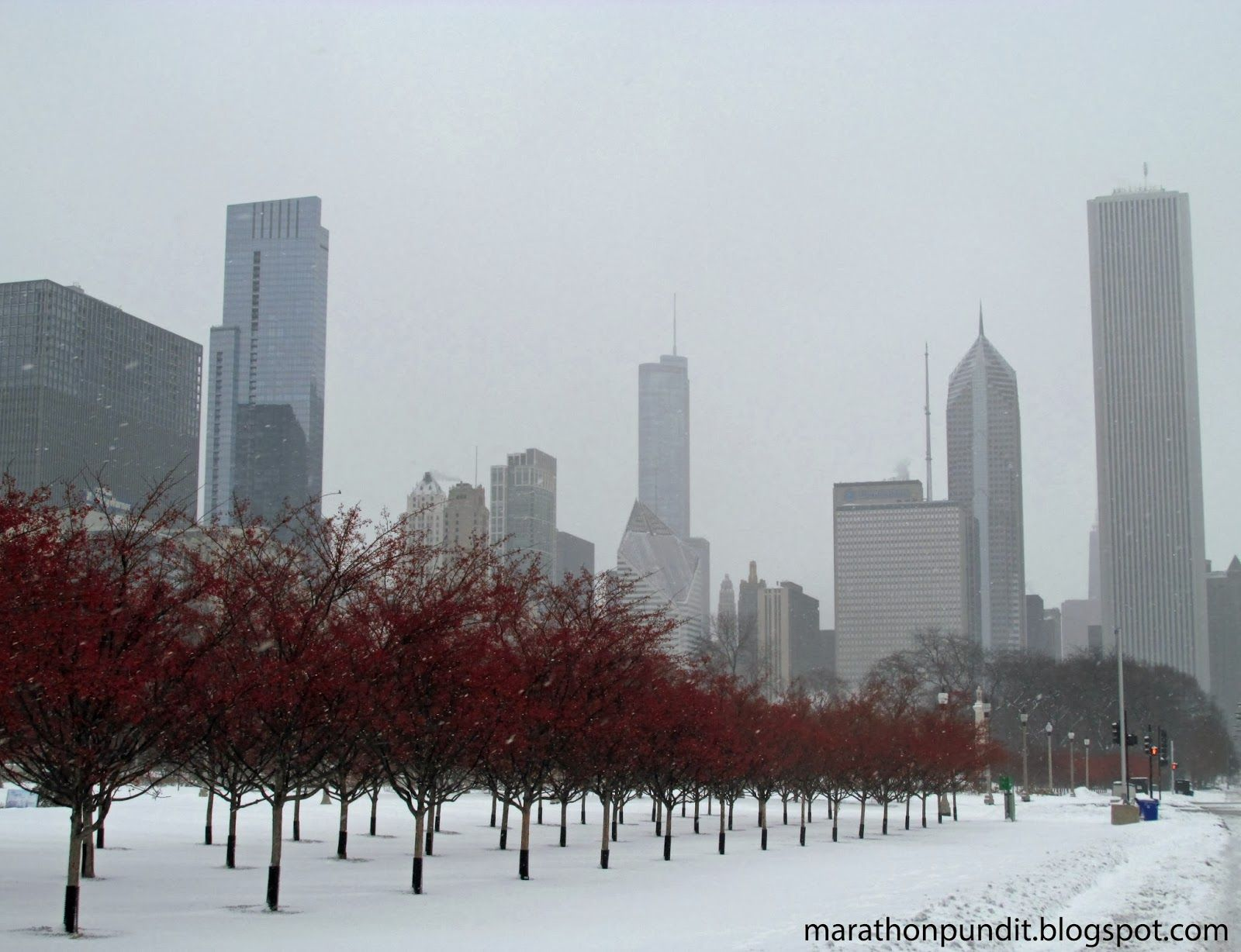 Chicagos Grant Park In Winter