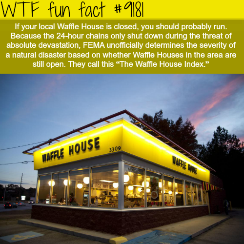 The Waffle House Index Wtf Fun Facts Wtf Fun Facts Fun Facts Funny Weird Facts