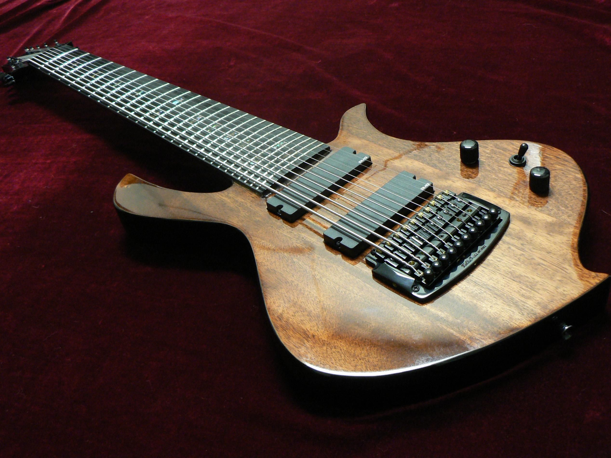 halo xsi 10 string electric guitar halo custom guitars pinterest halo 10 and electric. Black Bedroom Furniture Sets. Home Design Ideas