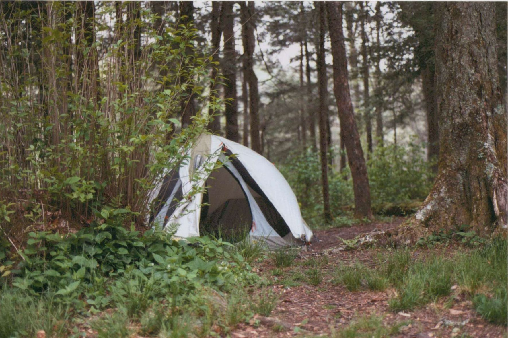 My old Mountain Hardwear tent & My old Mountain Hardwear tent | Old Tents | Pinterest | Mountain ...