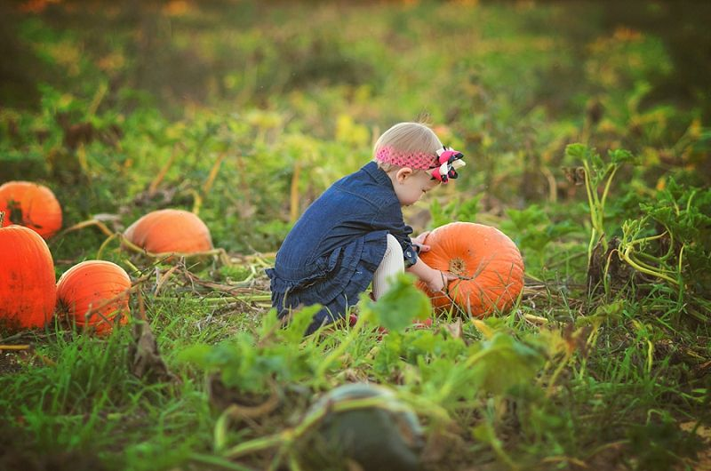 #Evansville #Indiana #Family #Photographer Pumpkin Patch Photography