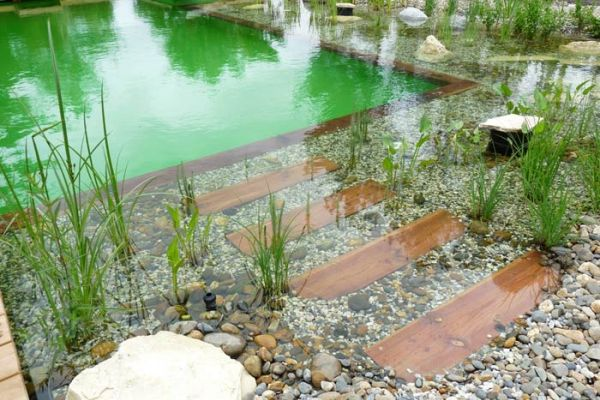 Natural Swimming Pool Really Lovely Idk How The Plants Deal With The Pool Water Chemicals But It Sure Piscine Naturelle Piscine Et Jardin Piscine Ecologique
