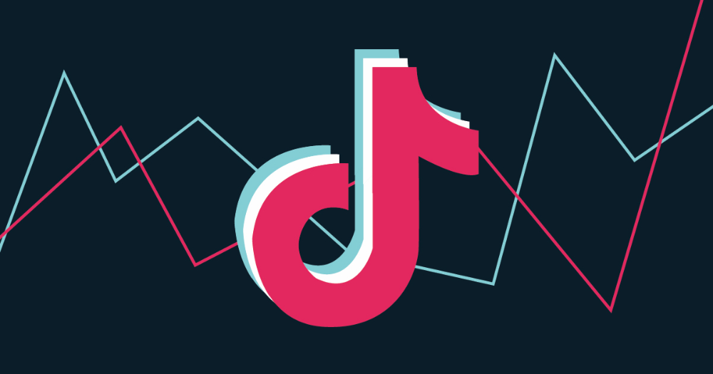 From Profile And Audience Views To Video And Hashtag Engagement Consider This Your One Stop Shop To Tiktok Get More Followers More Followers Social Media Apps