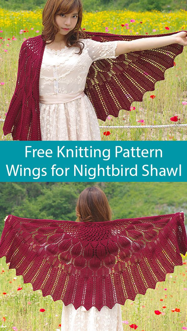 Free Knitting Pattern for Wings for Nightbird Shawl