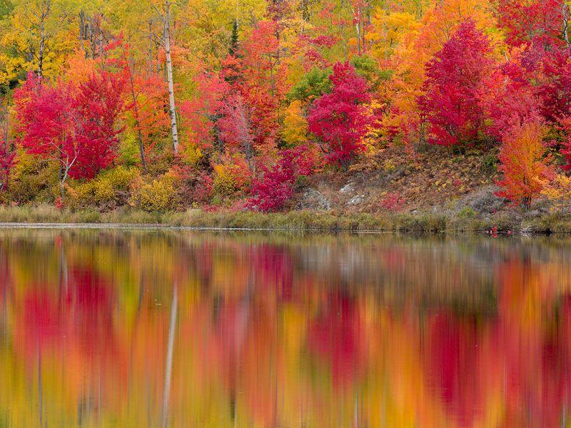 Autumn Reflections, Gryphon Lake, Espanola, Ontario