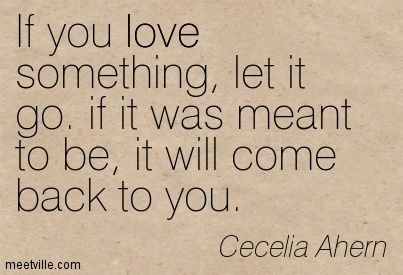 If You Love Something Let It Go If It Was Meant To Be It Will