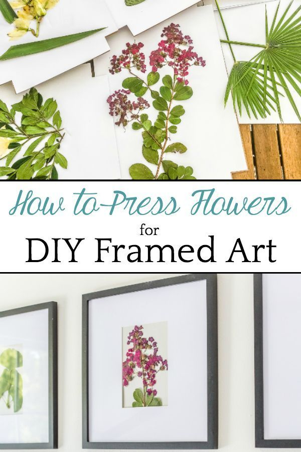 DIY Pressed Flower Art | How to press flowers and leaves from your own backyard to frame as inexpensive, vintage-inspired wall decor. #pressedflowers #walldecor