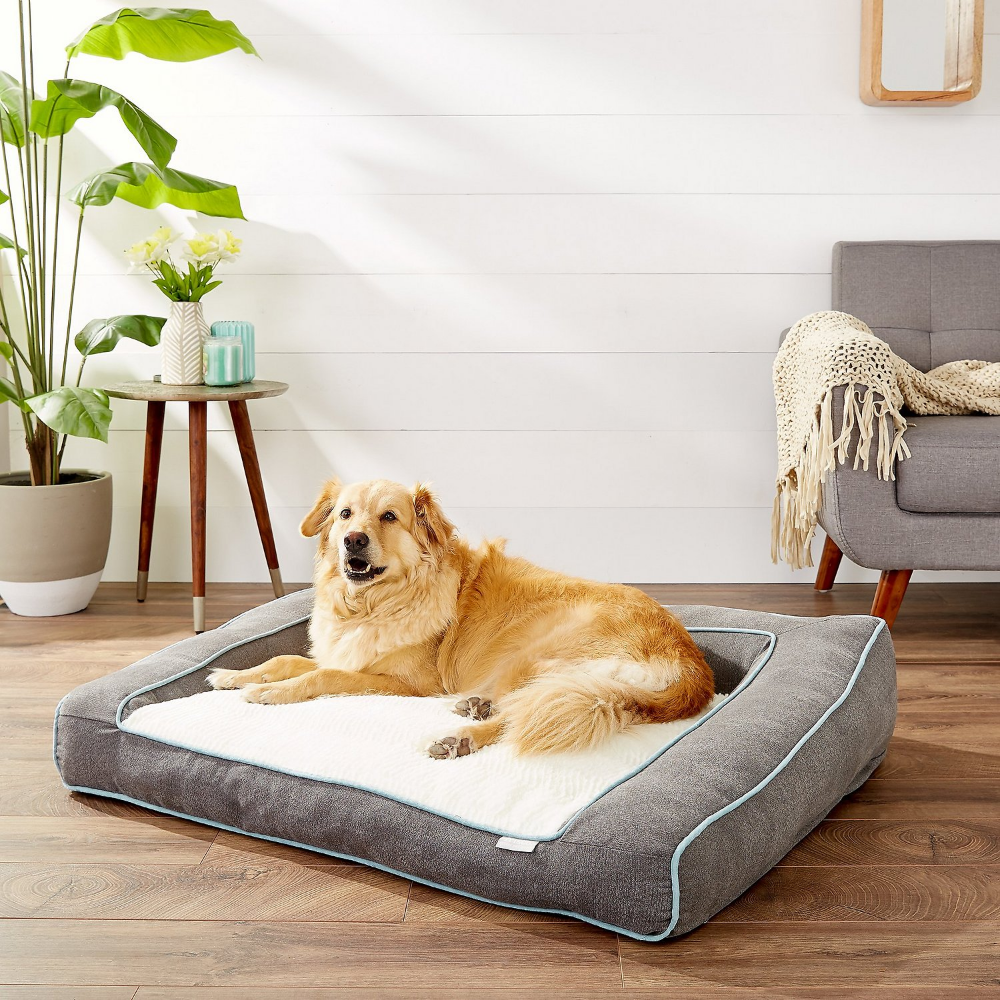 Frisco Plush Orthopedic Bolster Dog Bed W Removable Cover Gray X Large Chewy Com Bolster Dog Bed Dog Bed Dog Sofa Bed Dog beds with removable covers