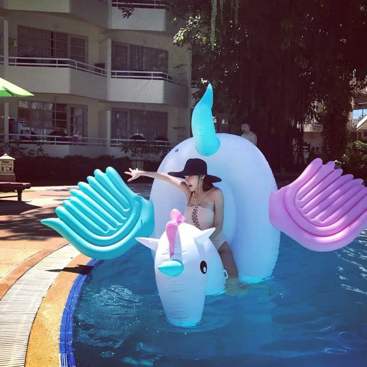 Pegasus Pool Float Pool floats and Pegasus