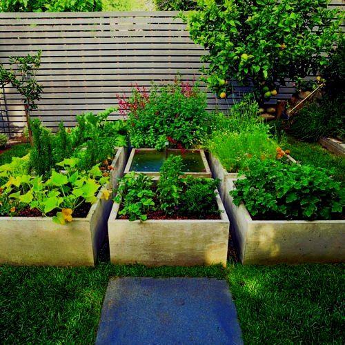 Garden Beds, Backyard Garden