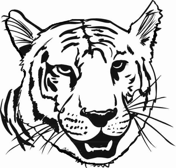 Head Tiger coloring picture for kids Tiger face