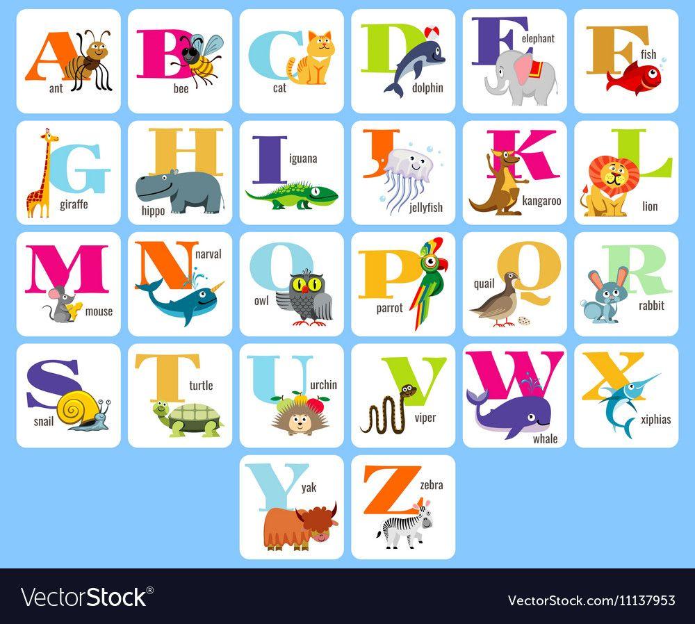 Kids full alphabeth with cartoon animals vector image on