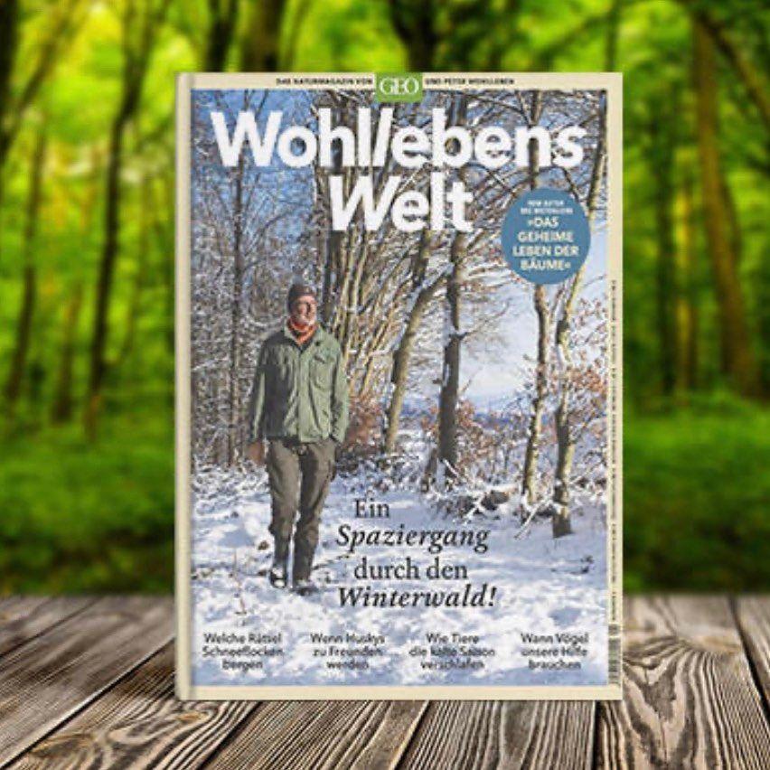 Gefallt 277 Mal 8 Kommentare Peter Wohlleben Peter Wohlleben