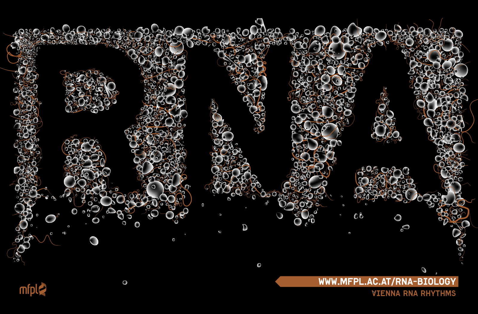 RNA BIOLOGY WALLPAPER 1600x1050