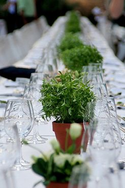 Wedding Table Centerpieces Ideas To Save You Money Plant