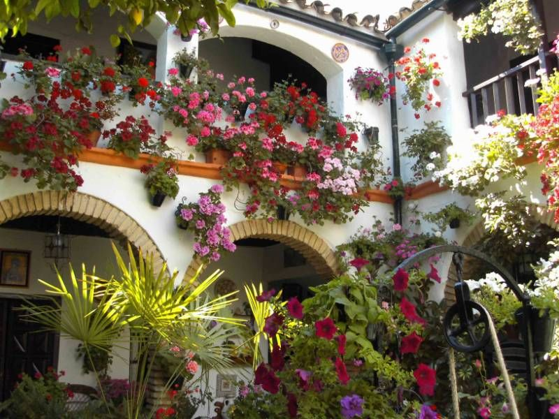 Vordoba spain andalusian patios patios andaluces - Patios andaluces decoracion ...