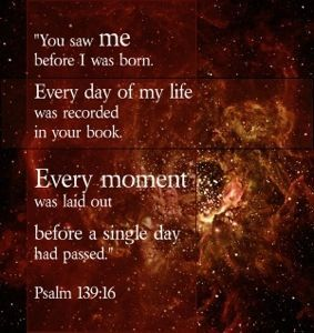 Image result for psalm 139 nlt