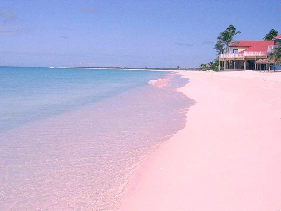 C Harbor Beach Bahamas The Best Beaches In World
