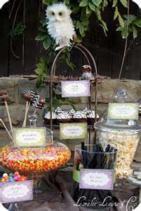 Harry Potter birthday buffet