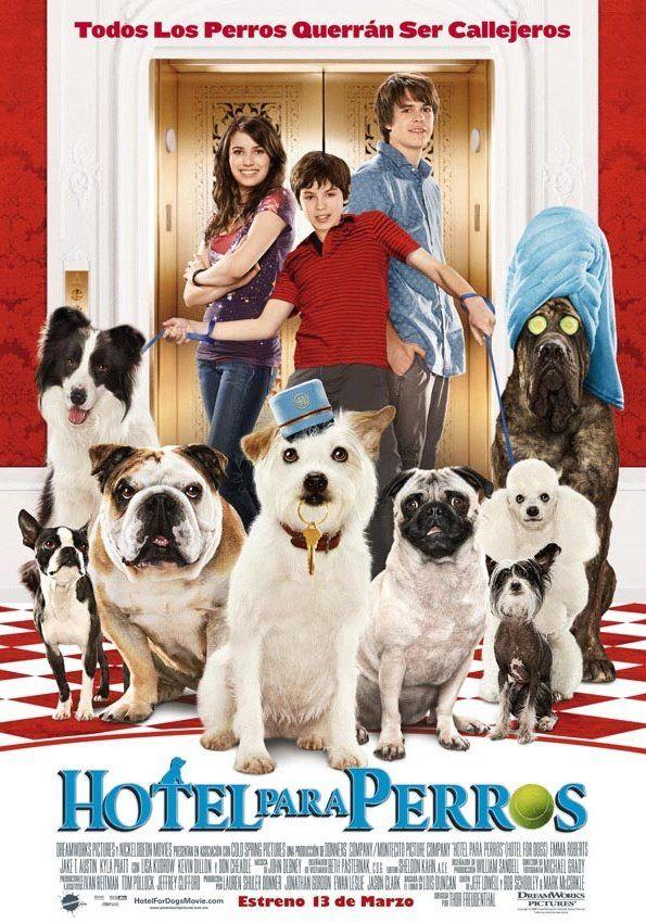 Hotel Para Perros Dog Hotel Dogs Dog Movies