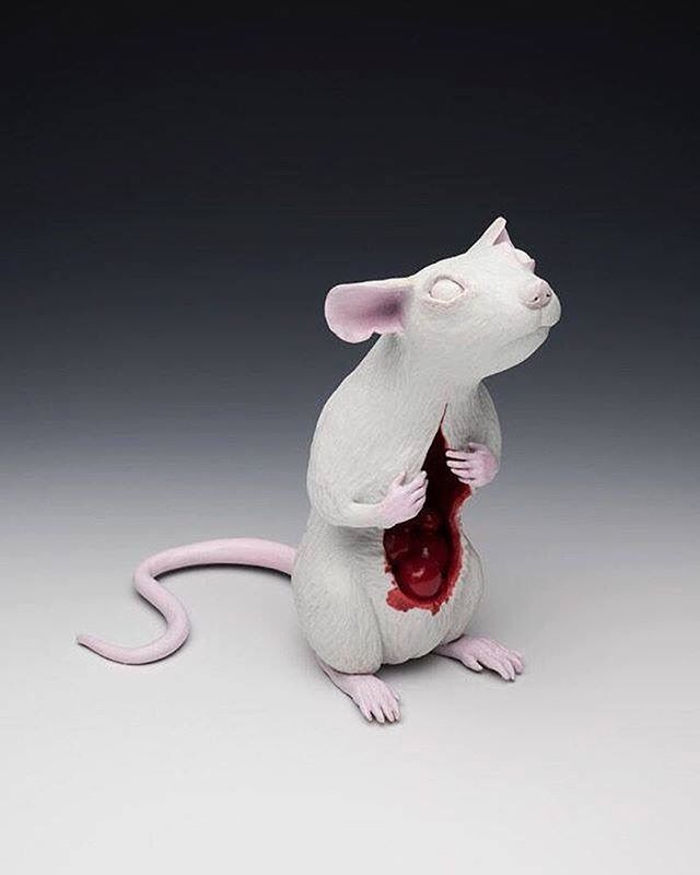 Porcelain Sculpture Anatomy Of A Mouse By Ashehole Submission