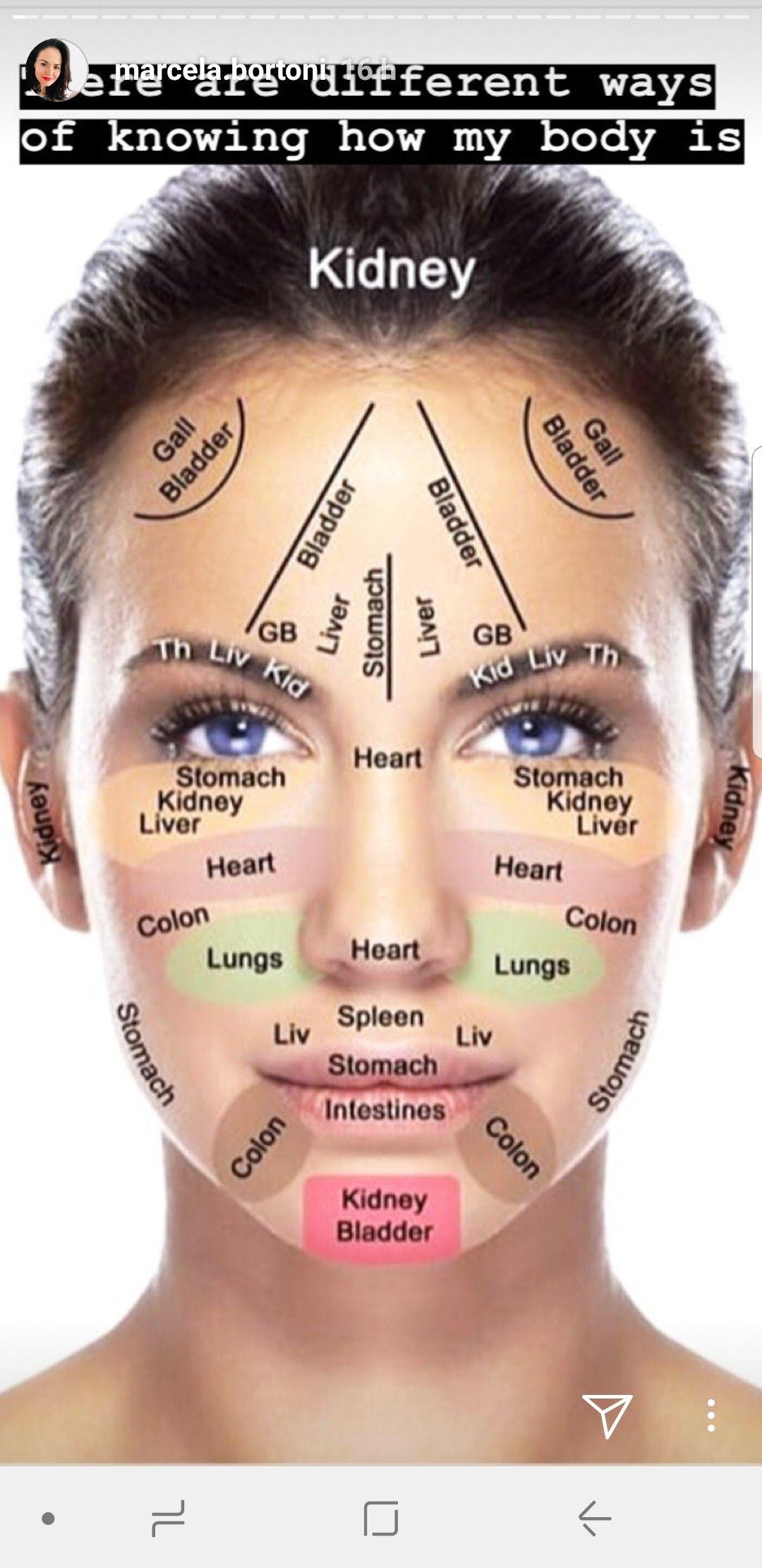 small resolution of facial acne map yoga facial face map acne body acne map facial