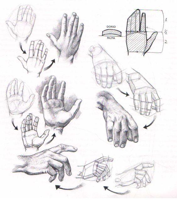 Aprender a dibujar manos y pies  El Dibujante 20   Pinteres