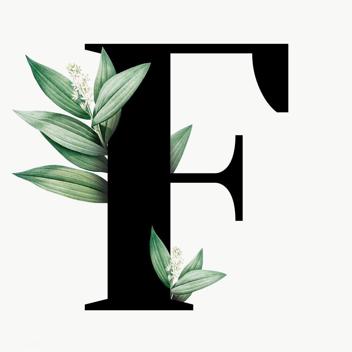 Botanical Capital Letter F Transparent Png Premium Image By Rawpixel Com Aum Graphic Design Fonts Letter F Alphabet Wallpaper