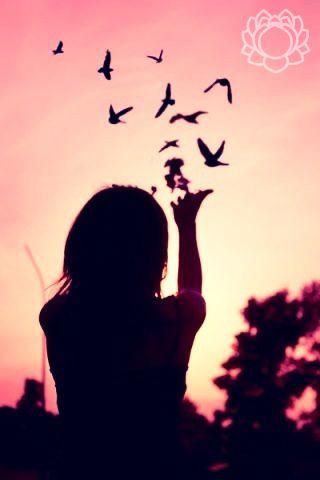 #birds #life