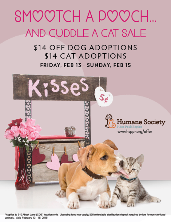 Valentine S Day Rescue Fundraiser Ideas Animalrescue Valentine S Day Rescue Fundra In 2020 Animal Rescue Fundraising Animal Shelter Fundraiser Animal Shelter Adoption