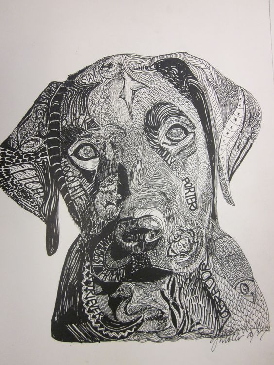Drawing With Hidden Lines : Zentangle dogs google search pinterest