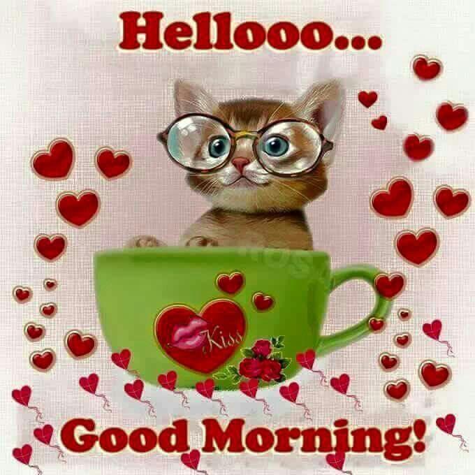 Hellooo...Good Morning!