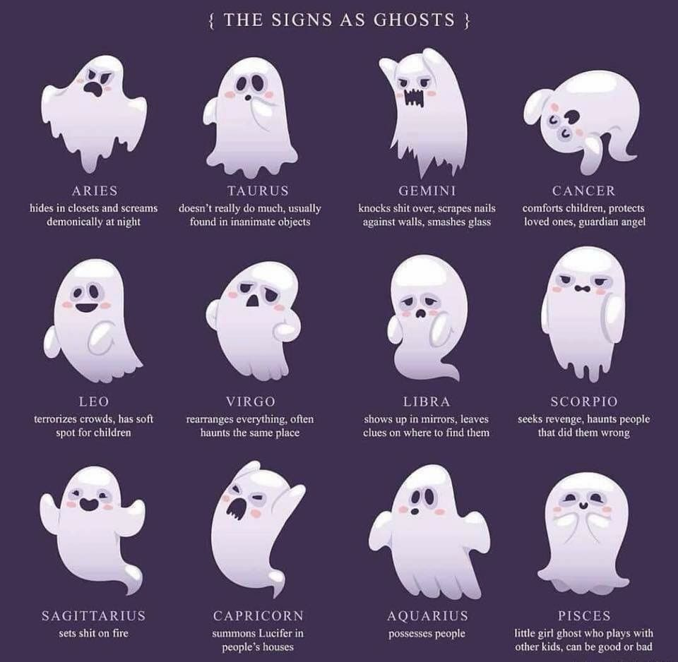 The Signs as Ghosts | Halloween Humor | Zodiac signs, Zodiac