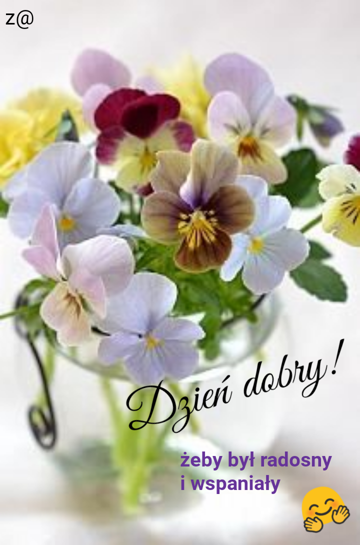 Pin By Terenia On Dzien Dobry Good Day Quotes Beautiful Flowers Pansies
