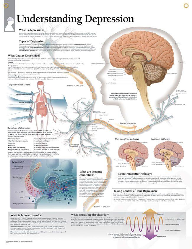 Understanding Depression Chart 22x28 | Bipolar disorder | Pinterest ...