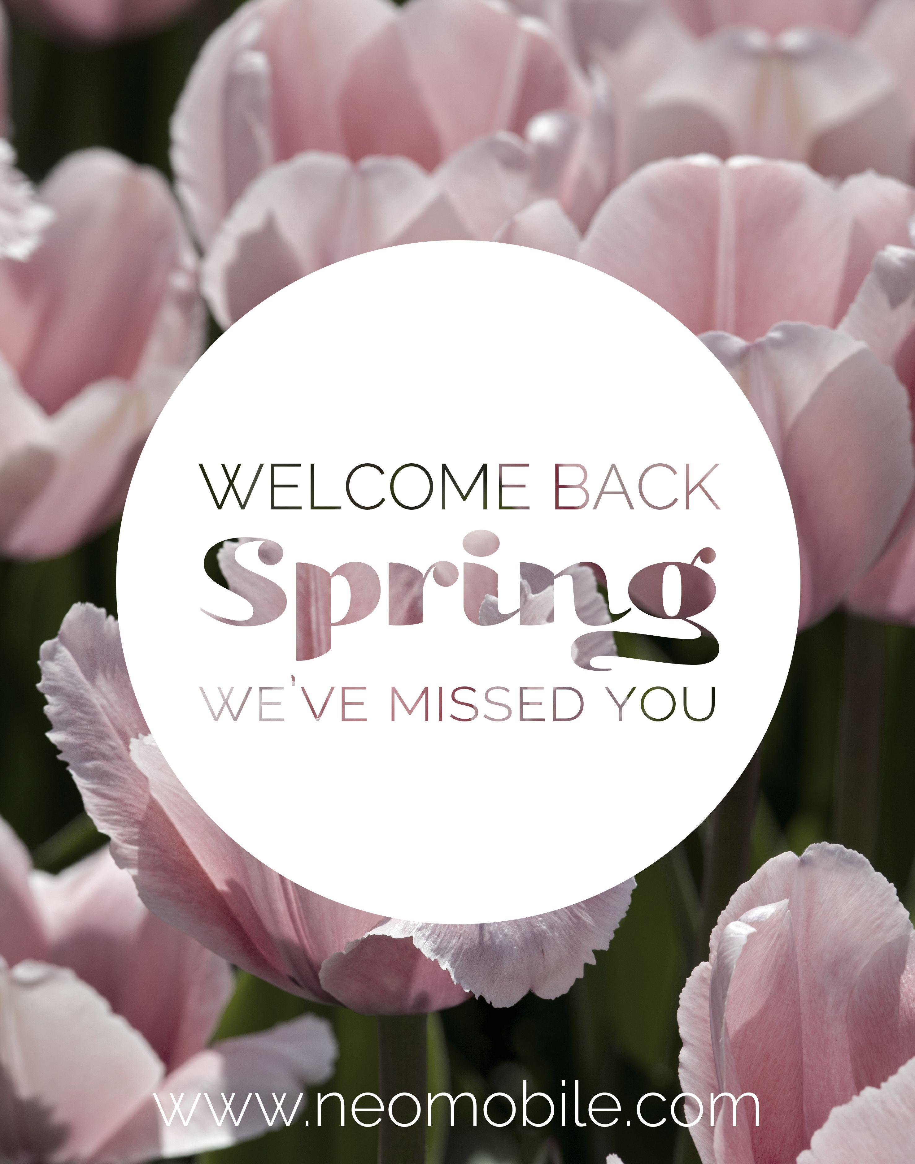 I Missed the Spring