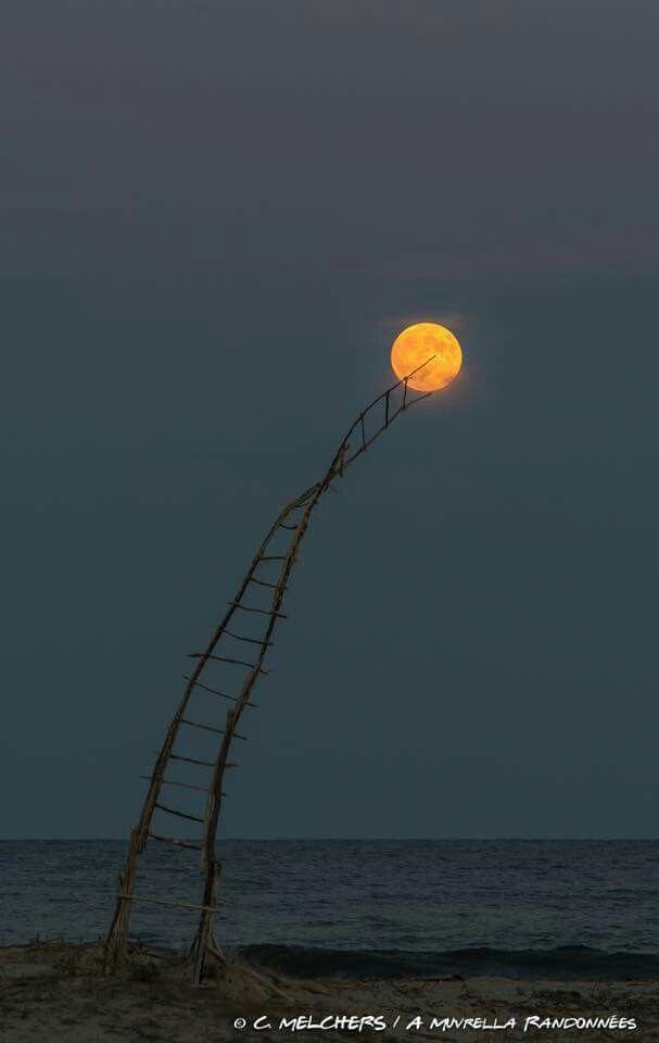 Un Jour J'irai Sur La Lune : j'irai, Jour.., J'irai, Décrocher, Nature,, Photographie,, Paysage