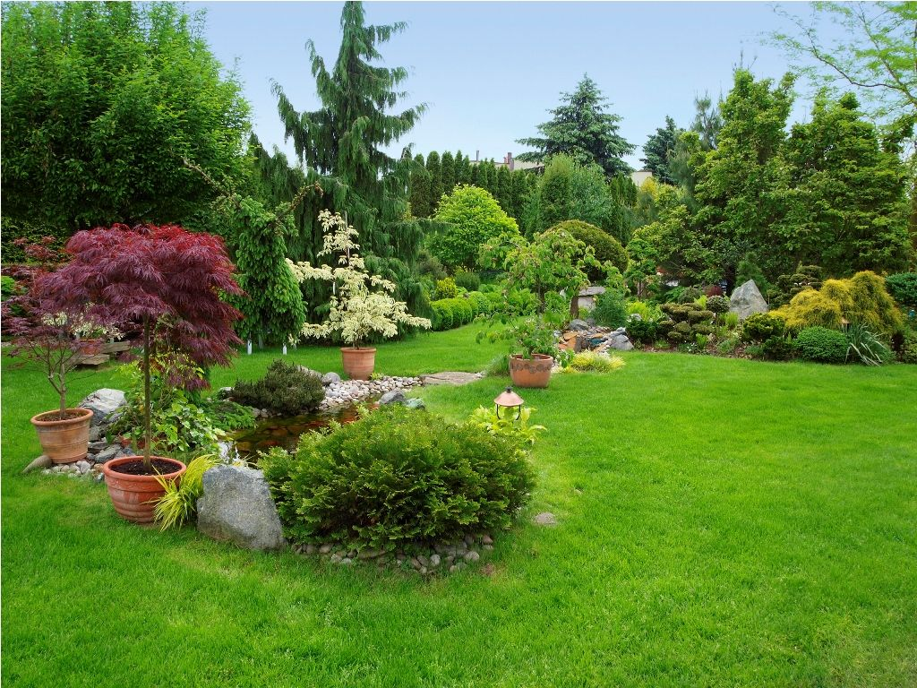 Exterior: Nice Backyard Landscaping Ideas With Trees Also ...