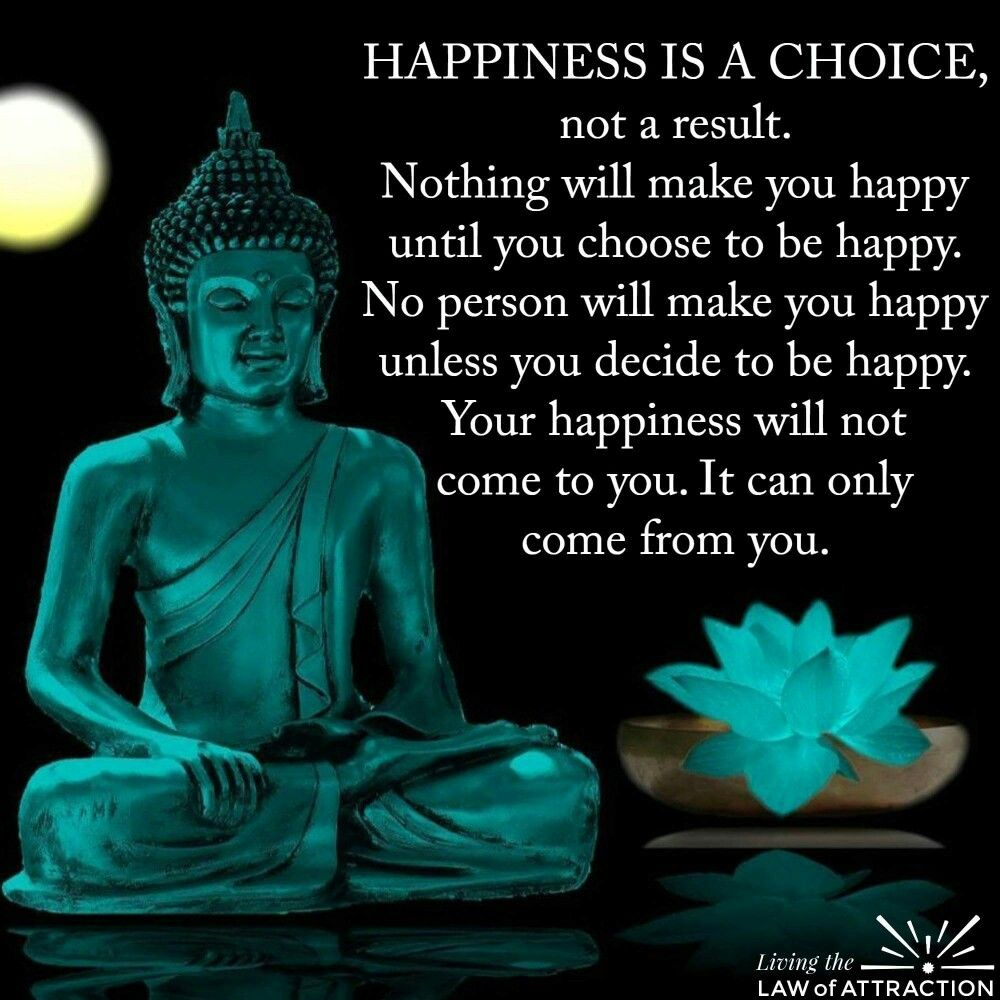 Buddha Quotes On Happiness Happiness  Stop & Think  Pinterest  Happiness Buddha And