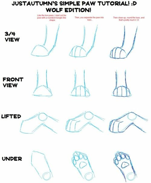 How To Draw Wolf Paws : Imagen, Draw,, Paws,, Realistic, Drawing,, Animal, Drawings