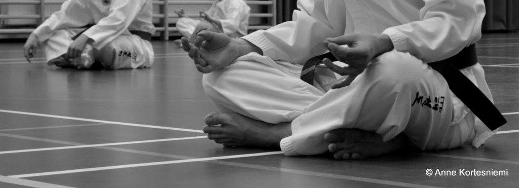 Uudet etusivun artikkelit mm. lifestyleblogeista nyrkkeilytuulahduksia, kultasepän kuulumisia ja Pontus-bokserin elämää uudessa kodissaan http://www.naejakoe.fi/