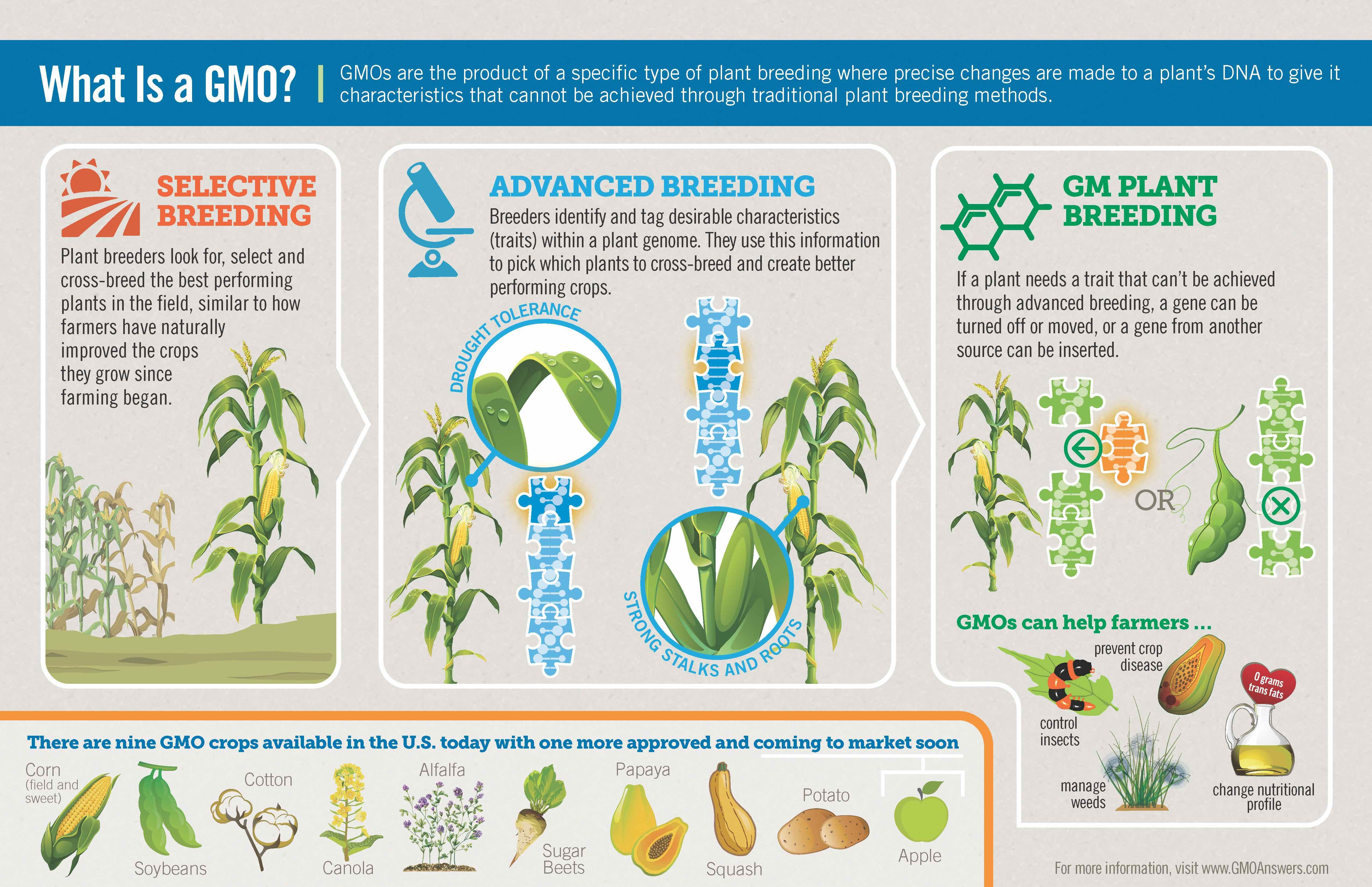 What Is A Gmo Learn What A Gmo Is And How Gmos Can Help Farmers
