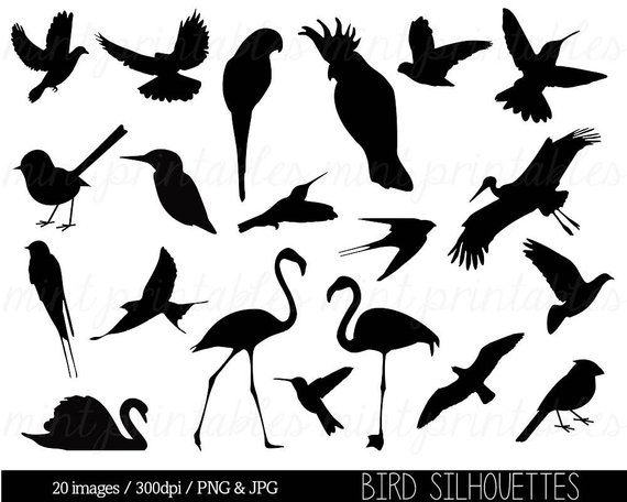 Clipart Birds Clipart Bird Silhouettes Bird Clip Art Animal Clipart Stork Dove Flamingo Comm Bird Silhouette Bird Clipart Animal Clipart