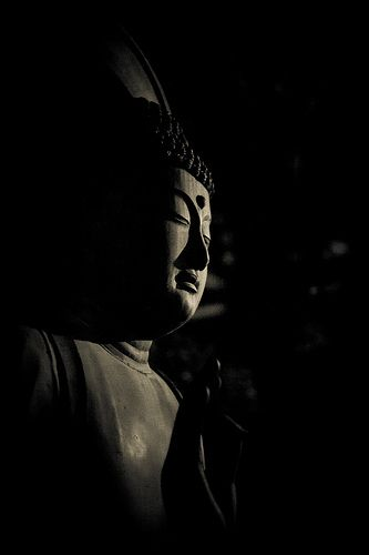 Quotes Buddha 1 By C Harnish Via Flickr: P E A C E F U L B U D D H A